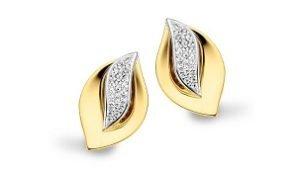 juwelen oorbellen zilver en zwarte zirconium